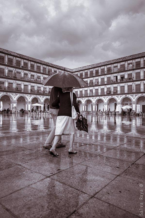 Ganador Salvador Raya - Photowalk Córdoba 2014